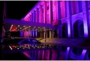 Guvernul României marchează European Fertility Week, prin iluminarea Palatului Victoria în culorile simbol